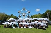 Studienreise Learning by Discovering - İhtisas Gezisi | Frauenjugendorganisation - Kadınlar Gençlik Teşkilatı | Brüssel 04.06.2014
